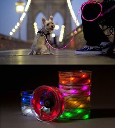 Illuminated Dog Leash, by Joseph Hassan.  This colorful light-up leash can be seen from up to a quarter-mile in the dark.  It's made of reinforced nylon, so it's strong and lightweight, plus a buck from every leash is donated to charity. There's no better way to light up your pup crawl. Pup Crawl Lights-Up Leash available in pink, orange, white, yellow, red, blue and green; 6ft/1.8m long. LED lights powered by two replaceable CR-2032 batteries (included).