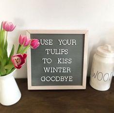 Jaro je tu! 🌷 #jaro #spring #jarojetu #springishere  #hellospring  #springiscoming  #loveit #warm #sun #tulips #tulipany #knoflikarkycz