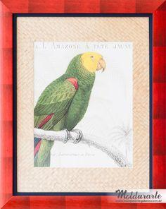 """Conjunto """"Pássaros"""" (gravura - 2 de 2). Fomato: 67x83 cm. Cód. 9369. contato@moldurartegaleria.com.br — em Moldurarte Galeria."""