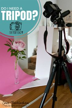 Do I need a tripod. Probably one of the questions I get asked the most. #tripod #doIneedatripod #photographytips #lowlightphotography #naturallightphotography
