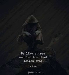 Be like a tree and let the dead leaves drop. Rumi via (http://ift.tt/2vCAmFB)  ....Let it go!