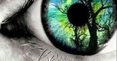 Just Pinned to Forests: Eyes http://ift.tt/2ynjLZd