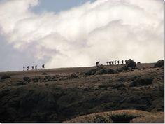 The Routes of Kilimanjaro - worldadventurers.wordpress.com