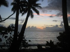 the sunsets and sunrises at dolphin bay were to die for. South Pacific, Fiji, Dolphins, New Zealand, Sunrise, Places To Visit, To Go, Journey, Australia