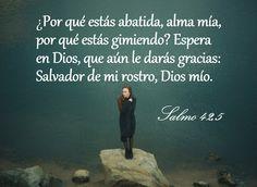 #biblia #espiritualidad #Jesús #versículo #mensajebiblico #salmo