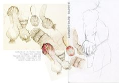 Fashion Design Development - sleeve design; fashion sketchbook drawings; fashion portfolio // Shanice Ramjohn-Henry