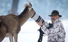 Animal photography nature
