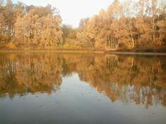 Jezioro w październiku 2015