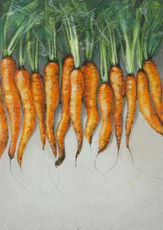 kitchen decor. Gift. Modern art. Home decor. Abstract art. Pastel drawing by Tetiana Kondratyk. Carrot. Carrots.