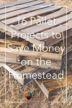 Do you love recycling old stuff to make new stuff? Click here to see how fun making pallet projects can add fun and functionality to your homestead. Pallet Projects | DIY Projects | Homesteading