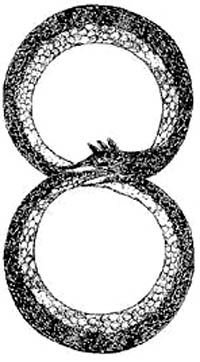 """Dans la mythologie grecque, l'Ouroboros est un serpent (ou un dragon selon les représentations) """"qui se mord la queue"""" pour former un tout indifférencié. Il est la perpétuelle rénovation de la nature. Symbole de l'infini, il est l'union entre la fin et le commencement, le commencement et la fin."""