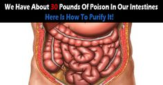 Did You Know That We Have About 30 Pounds Of Poison In Our Intestines? – Here Is How To Purify It!