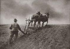 Valet de charrue, ouvrier agricole. #archives #Geneanet