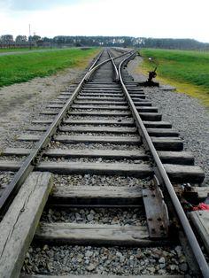 tracks Under The Tuscan Sun, Train Tracks, Steam Locomotive, Bridges, Railroad Tracks, Paths, Scenery, Yard, Landscape