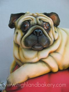 pug cake by Karen Portaleo/ Highland Bakery, via Flickr
