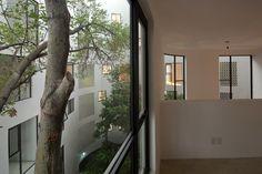 Gallery - Cacamatzin 34 / DEA Diseño Exterior y Arquitectura - 8