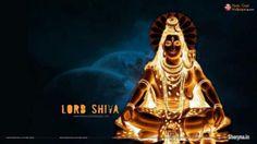 love vashikaran,,,% specialist i +919312128102 | Free Classifieds