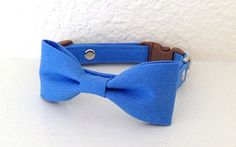 Corn Flower Blue Bow Tie Collar for  Cats and Dogs