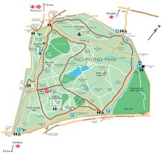 our best london walk : city and country in Richmond Upon Thames Richmond Surrey, Richmond Upon Thames, Richmond Park, Planning Cycle, British Country, Royal Park, Victoria, Beautiful Places In The World, Childhood Memories