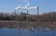 Dominion created a wildlife habitat near its Chesterfield Power Station.