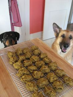 """Organic Dog Treats. Easy Dog Treats! """"Sweet Offal"""" Cookies from the BrinyLife Blog will be a great addition to your doggy recipe book! Check out the Healthy Dog Blog for this great recipe! #organic #dogs #dogtreats #recipe #dogtreatrecipe #healthy"""