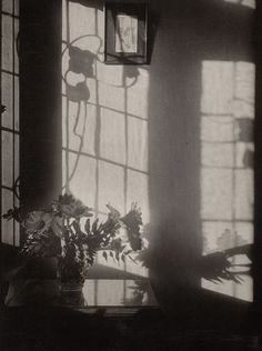 Olive Cotton, By my window, 1930