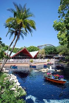 Busch Gardens - Tampa, Florida Went many times when visiting my grandparents. More familiar with Tampa, than Chicago...