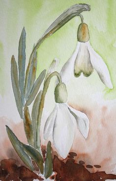 watercolor painting of a little snowdrop, created by the photographer Watercolor Pictures, Watercolor Cards, Watercolor Print, Watercolour Painting, Watercolor Flowers, Graffiti Kunst, Fabric Painting, Art Tutorials, Painting Inspiration