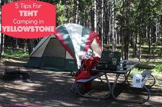 Tips for tent camping in Yellowstone National Park. I can attest for tip number one! I have had this problem a couple times to many!