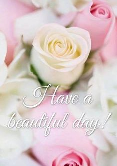 Good morning ladies, hope everyone is having a great day! Remember to stop and smell the flowers! Good Morning Ladies, Good Morning Good Night, Have A Beautiful Day, Have A Great Day, Birthday Wishes, Happy Birthday, Morning Blessings, Good Morning Greetings, Have A Blessed Day