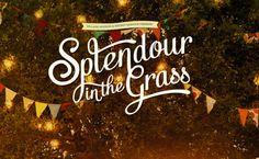 Splendour in the Grass 2013 #splendourinthegrass #byronbay