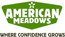 Partial Shade Wildflower Seed Mix - American Meadows