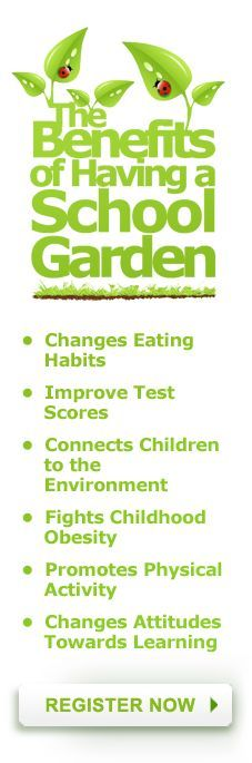 The Benefits Of School Gardens Are Numerous And Are Not Restricted To A Particular Age Group