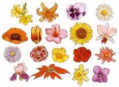 flower templates