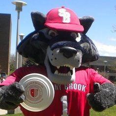 Mascot Madness 2016: Vote for Wolfie! @ blog.suny.edu/2016/03/mascot-madness-2016-final-four #seawolvesread #stonybrook #stonybrooku #seawolves #wolfie2016 #mascotmadness