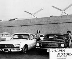 Mustang Dealer shot 1966