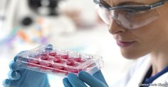 Stem cells are starting to prove their value as medical treatments