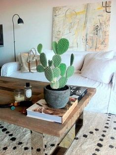 Indoor-Grünpflanzen pflegeleicht: Auswahl von 20 Arten Plante d'intérieur facile à entretenir - Plants Indoor Cactus Garden, Indoor Plants, Indoor Gardening, Bohemian House, Bohemian Living, Modern Bohemian, Bohemian Decor, Bohemian Style, Decoration Inspiration