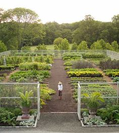Martha Stewart garden. This is totally what my backyard is going to look like.
