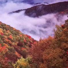 Great Smokey Mountain National Park in E. Tennessee.... A huge National Part that extends to several states.  Plenty of beauty and history, restaurants, lodging and fun things to do are abundant.