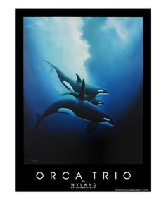 Wyland Orca Trio. Water Gallery second quarter 2015 spring water image. #mywatergallery #wyland