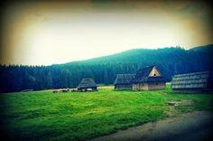 Murzasihle, village in Poland! Piękna miejscowość!