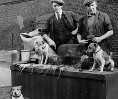 Rat Catchers With Their Jacks: St Pancras Goods Yard, 1953 Jim Forty and Alfred…
