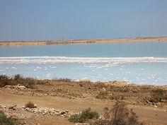 Dead Sea, Israel - Central Ein Bokek, between Leonardo Hotels and northern hotel cluster Dead Sea Israel, Psalm 122, Sea Level, Jerusalem, Hotels, Ocean, Earth, World, Water