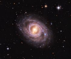 M95 with Supernova . © NASA (APOD)