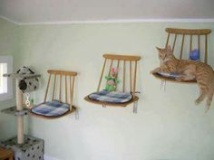 DIY cat furniture decorating idea                                                                                                                                                                                 More                                                                                                                                                                                 More