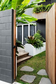 Balmain | Sticks and Stones Small Outdoor Spaces, Outdoor Rooms, Outdoor Decor, Backyard Garden Landscape, Garden Beds, Raised Planter Beds, Screen Plants, Office Images, Boundary Walls