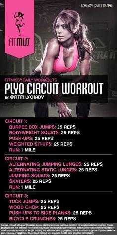 FitMiss Plyo Circuit Workout: oooooo @asalyer316 #kickourasses                                                                                                                                                                                 More