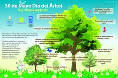 Infografía dia del arbol 2015
