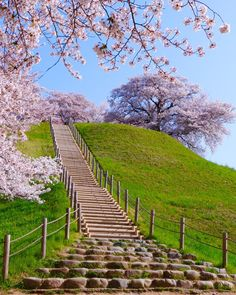 Sakitama Kofun Park, Gyoda, Saitama, Japan, さきたま古墳公園, 行田, 埼玉, 日本, ancient ruins